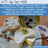 WTF Fun Fact – Disney or D'Isigny