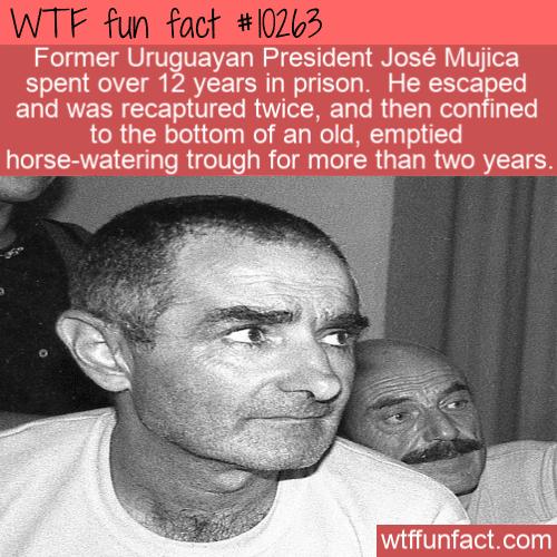 WTF Fun Fact - Former Uruguay President