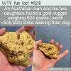 WTF Fun Fact – Gold Find On Dog Walk