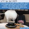 WTF Fun Fact – Coffee Mellow