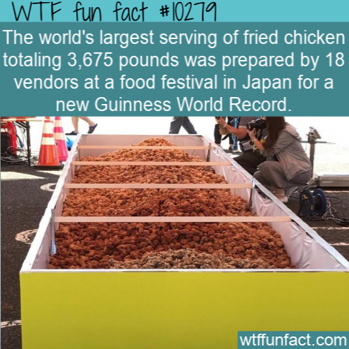 WTF Fun Fact - Largest Fried Chicken