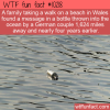 WTF Fun Fact – Slow Message Service