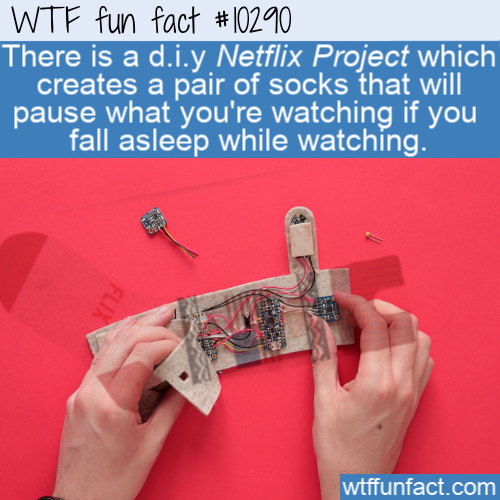 WTF Fun Fact - Netflix Socks