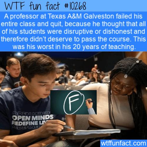 WTF Fun Fact - Professor VS Students