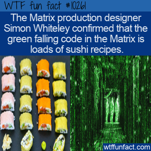 WTF Fun Fact - Sushi Recipes Made Code
