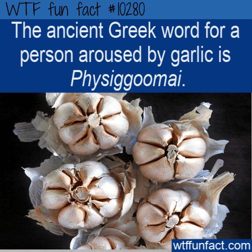 WTF Fun Fact - physiggoomai