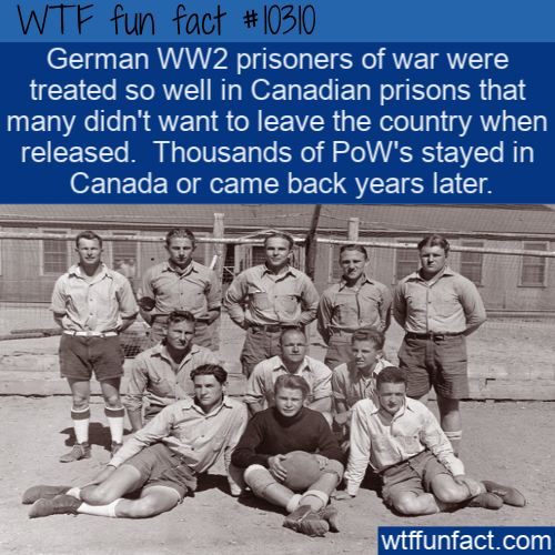 WTF Fun Fact - Canadian Prison