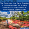 WTF Fun Fact – River of Five Colors