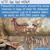 WTF Fun Fact – Early Human Canned Soup