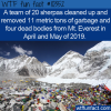 WTF Fun Fact – Cleanup Of Mt. Everest