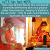 WTF Fun Facts – Shingon Monks Sokushinbutsu