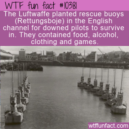 WTF Fun Fact - Rettungsboje