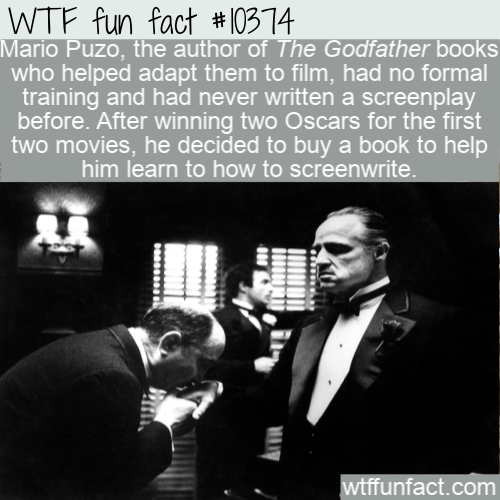 WTF Fun Fact - Study Godfather