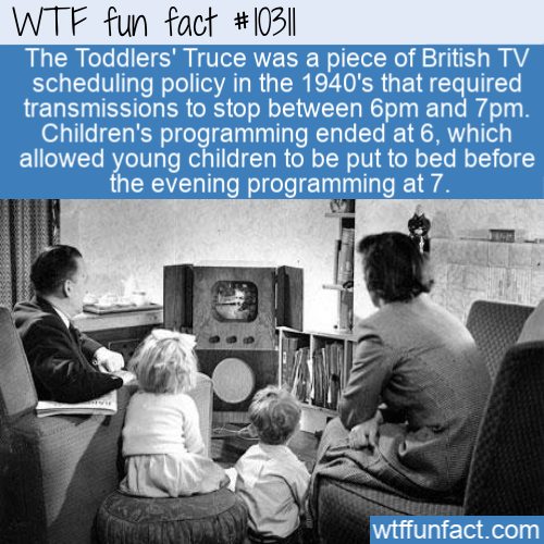 WTF Fun Fact - Toddler's Truce