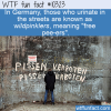 WTF Fun Fact – Wildpinkler