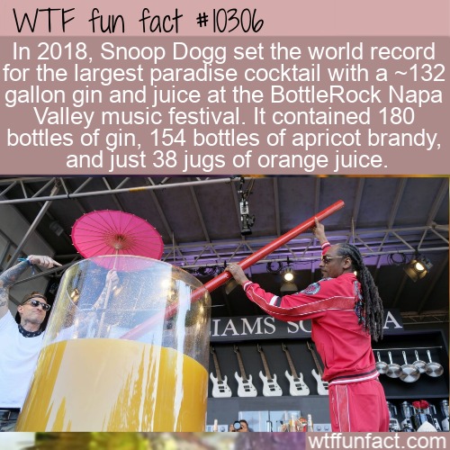 WTF Fun Fact - World Record Gin And Juice