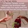 WTF Fun Fact – Apple Peel Leather