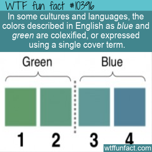 WTF Fun Fact - Blue and Green Colexified