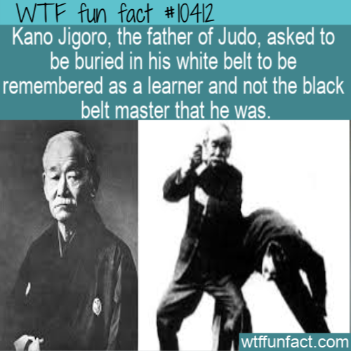 WTF Fun Fact - Buried In White Belt