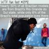 WTF Fun Fact – Brazil's Models