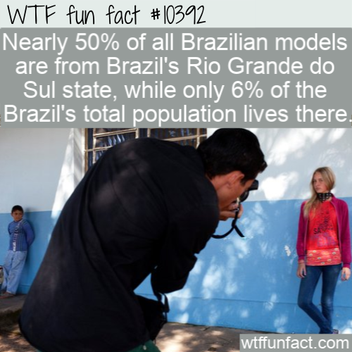 WTF Fun Fact - Source Of Brazils Model