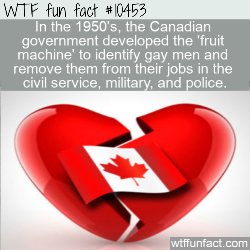WTF Fun Fact - Canadian Fruit Detection Machine