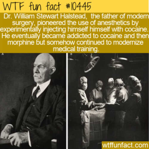 WTF Fun Fact - Halstead Cocaine Use