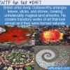 WTF Fun Fact – Amazing Land Artworks