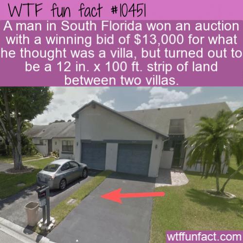 WTF Fun Fact - Man Buys 30cm strip of land