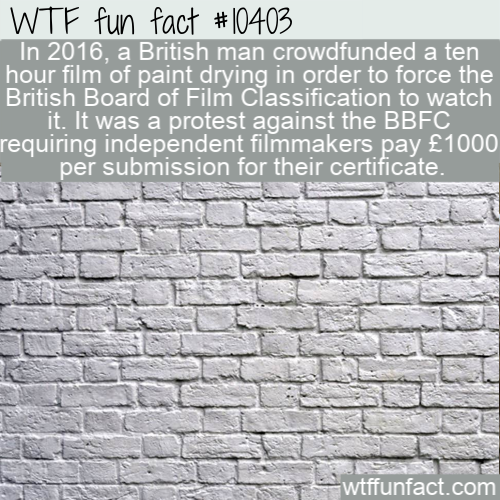 WTF Fun Fact - Paint Drying Film