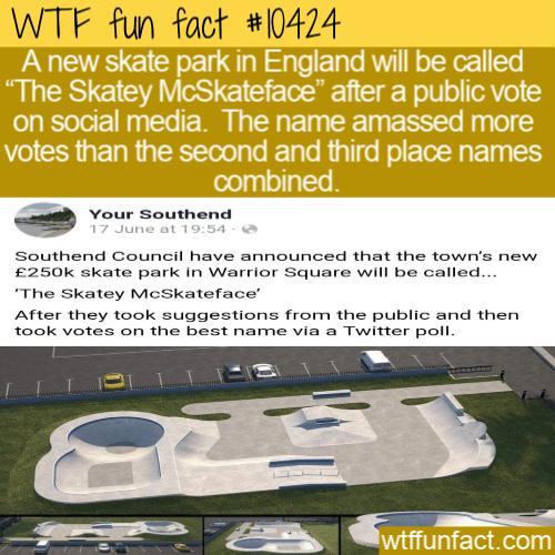 WTF Fun Fact - Skatey McSkateface