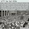 WTF Fun Fact – Straw Hat Riots