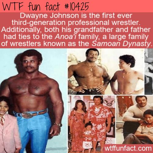 WTF Fun Fact - The Rock