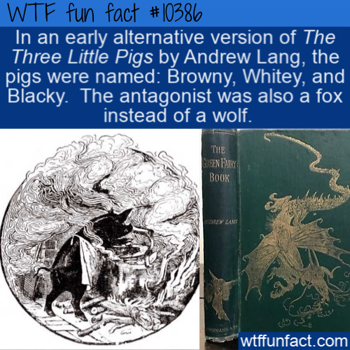 WTF Fun Fact - Three Little Pigs