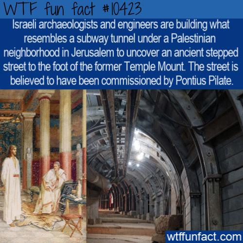 WTF Fun Fact - Pontius Pilate Street