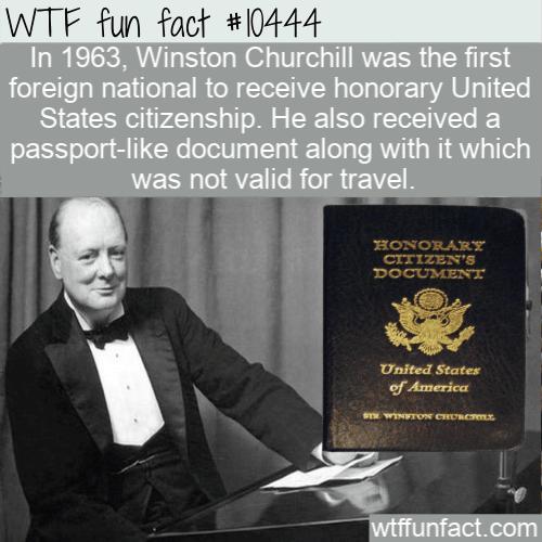 WTF Fun Fact - Winston Churchill US Citizen