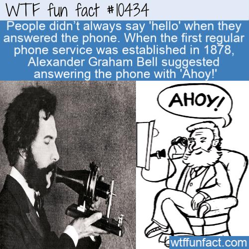 WTF Fun Fact - _Hello_ No No _Ahoy_