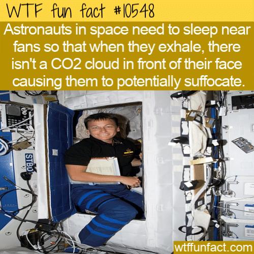 WTF Fun Fact - Astronauts Sleep With Fans