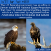 WTF Fun Fact – National Eagle Repository
