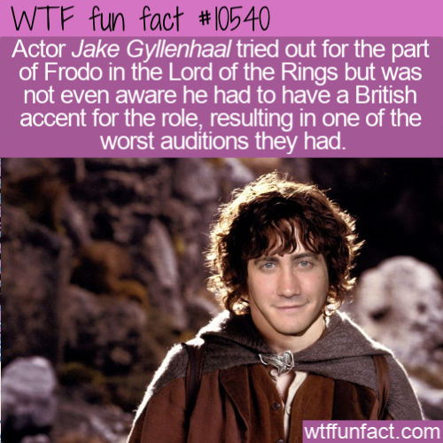 WTF Fun Fact - Jake Gyllenhaal Frodo