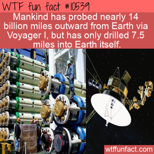 WTF Fun Fact - Mankind Travel Mostly Outwards