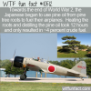 WTF Fun Fact – Pine Roots For Jet Fuel