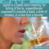 WTF Fun Fact – Sgriob