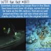 WTF Fun Fact – Black Sea Shipwrecks