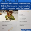 WTF Fun Fact – The Crunchy Part