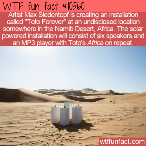 WTF Fun Fact - Toto Forever In Africa