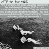 WTF Fun Fact – Japanese Ama