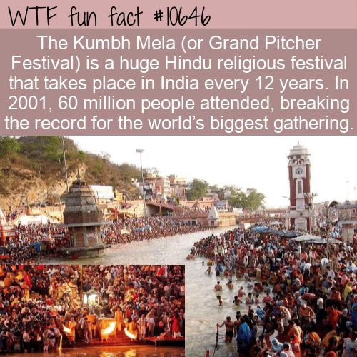 WTF Fun Fact - Biggest Crowd