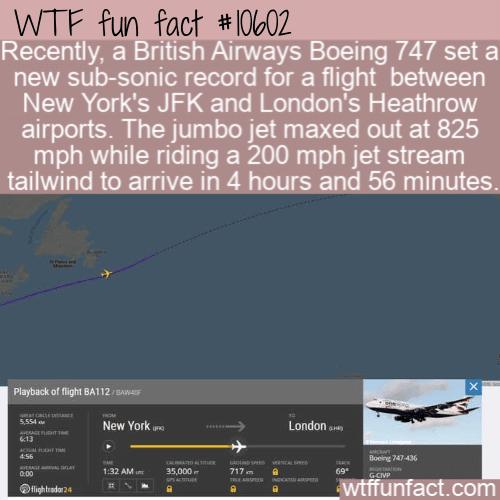 WTF Fun Fact - British Airways Speed Record