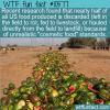 WTF Fun Fact – Wasteful Cosmetic Food Standards
